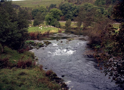 River Wye near Shacklow Mill